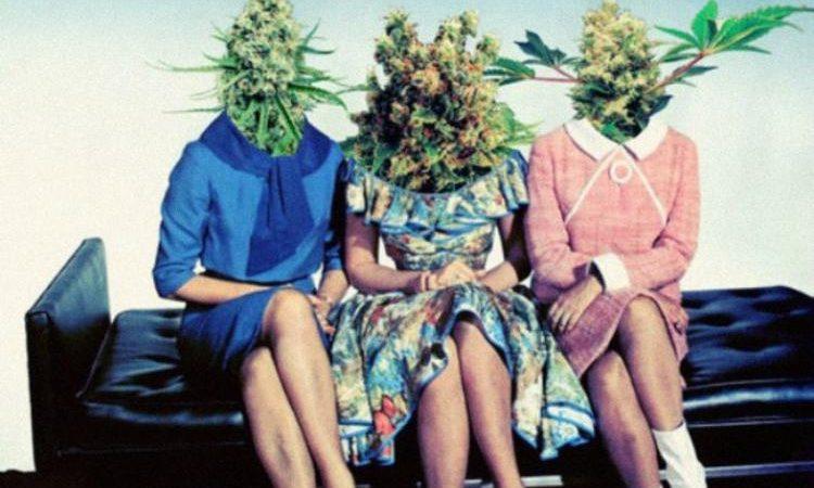 Mαριχουάνα & Εγκέφαλος