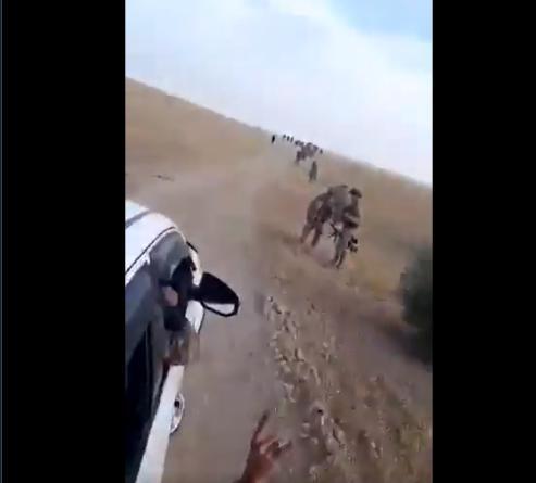 Τρομοκράτες Και Γκρίζοι Λύκοι Σφάζουν Κουρδους !