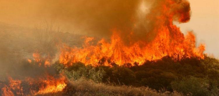 Μεγάλη φωτιά στη Ζάκυνθο – Νύχτα αγωνίας για τους κατοίκους χωριού (βίντεο)