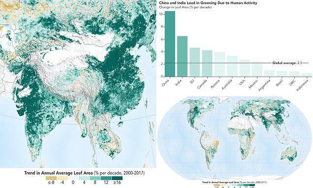 Kίνα Και Ινδία Δενδροφύτευσαν Έκταση Όσο Το Δάσος Του Αμαζονίου Μέσα Σε Δύο Δεκαετίες