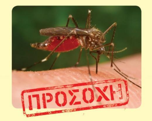 Προσοχή καταφτάνουν τα κουνούπια! – Πως να προφυλαχθείτε από τον ιό Δυτικού Νείλου