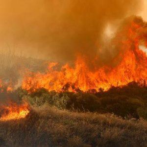 Μεγάλη Φωτιά Στη Δυτική Αχαΐα Και Στις Πλαταιές Βοιωτίας – Πνέουν Ισχυροί Άνεμοι