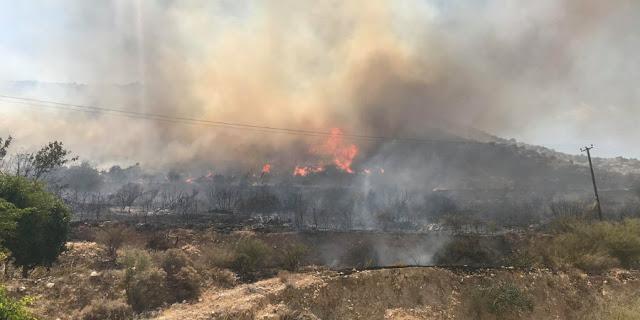 ΚΥΠΡΟΣ : Εκτός Ελέγχου Η Φωτιά Στη Λεμεσό – Ζητήθηκε Βοήθεια Από Τις Βρετανικές Βάσεις