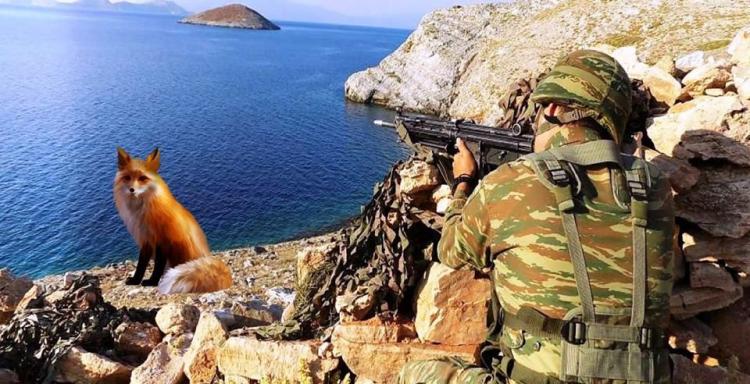 Ένας αδελφός ρώτησε. Μήπως την ώρα που θα πιάνουν την τουρκική αλεπού στα τέσσερα έχει στο στόμα της την Ελλάδα; (ΦΕΥ)