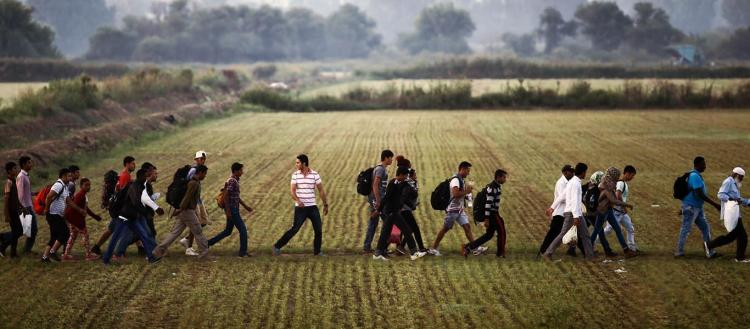 Έβρος: Παράνομοι μετανάστες καίνε τις περιουσίες των κατοίκων – Κυριαρχεί ο φόβος παντού
