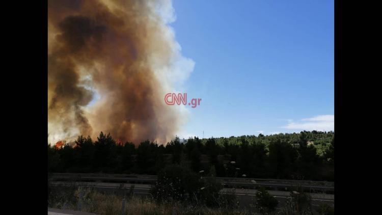 Μαίνεται η φωτιά στον Μαρτίνο Φθιώτιδας – Δύσκολο το έργο της κατάσβεσης λόγω ανέμων