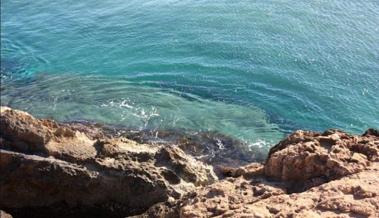 Rick : Ένα θαλάσσιο….. «μυστικό επιβίωσης»