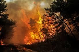 «Apple Fire»: Ανεξέλεγκτη μαίνεται η μεγάλη φωτιά στην Καλιφόρνια – Βίντεο.