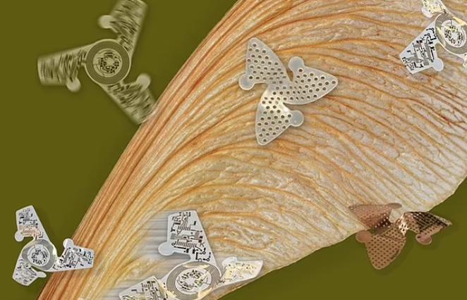 Ποιός κορωνοϊός; ΣΜΗΝΗ από μικροσκοπικά «φτερωτά τσιπ» θα σας βρίσκουν στα πιο απάτητα μέρη! – BINTEO.
