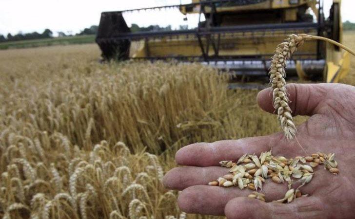 """Επισιτιστική κρίση- Σήμα κινδύνου για τις ελλείψεις σιτηρών: """"Η Κύπρος θα πεινάσει"""""""